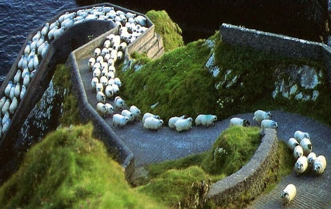 Image result for ирландия фото